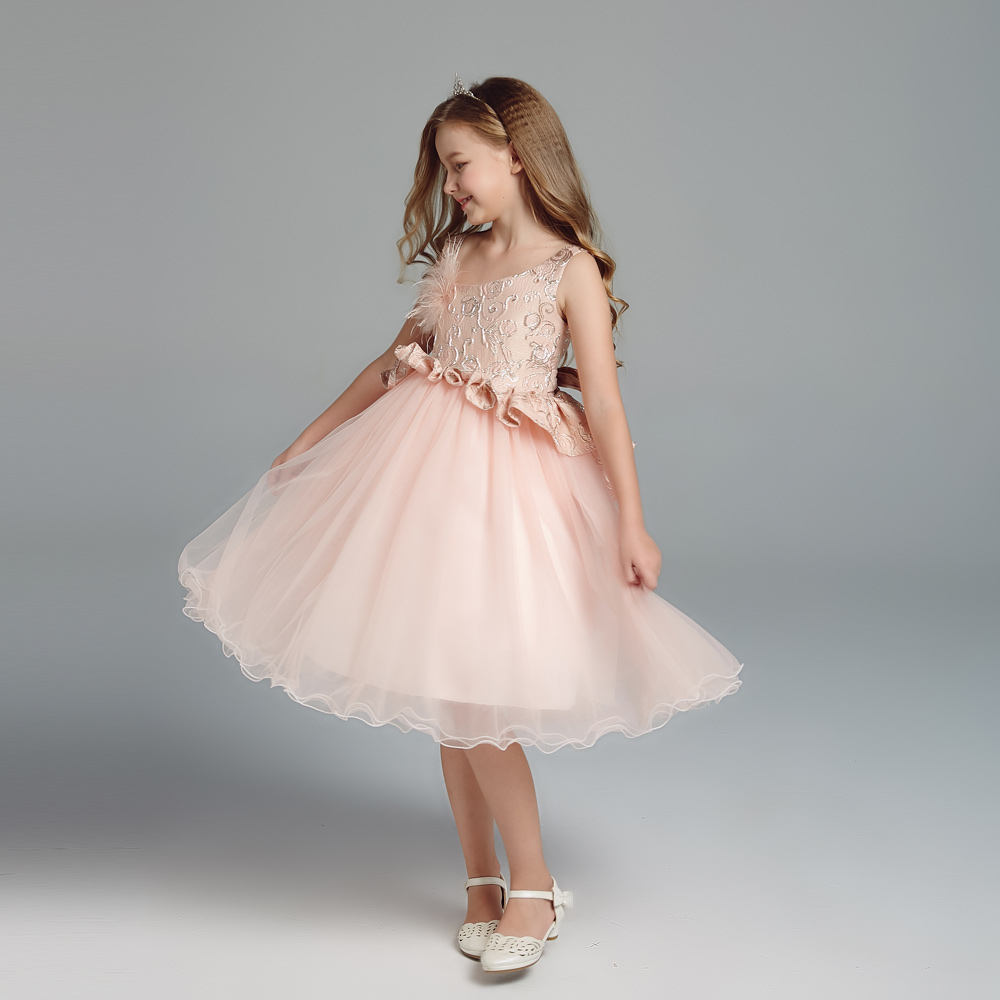 Embroidered Kids Princess Dress Kids Girl Princess Dress for sale