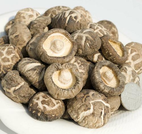 Detan Dried Shitake Mushrooms for sale