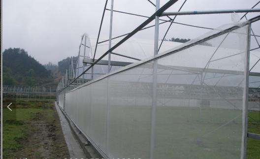 Malla Antitrip 20/10 mesh for sale