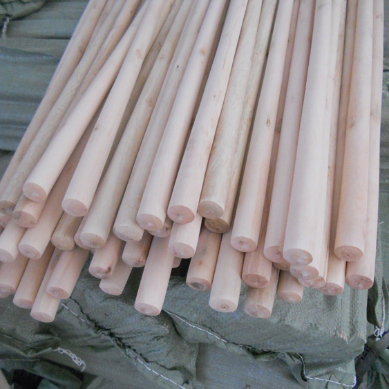 Best price of Wooden Round Eucalyptus Logs sale