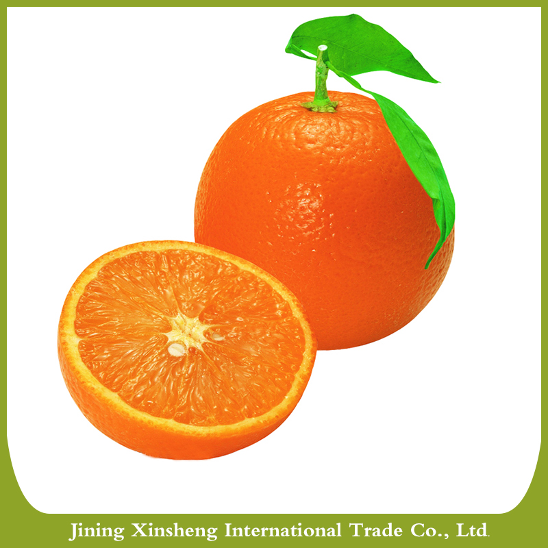 New fresh orange fruit specific for sale