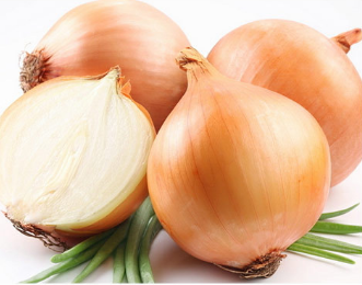 Fresh Yellow Onions With Competitive Price