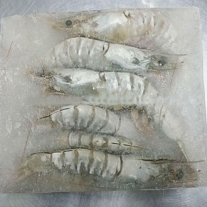 OEM HACCP Vannamei White Shrimp
