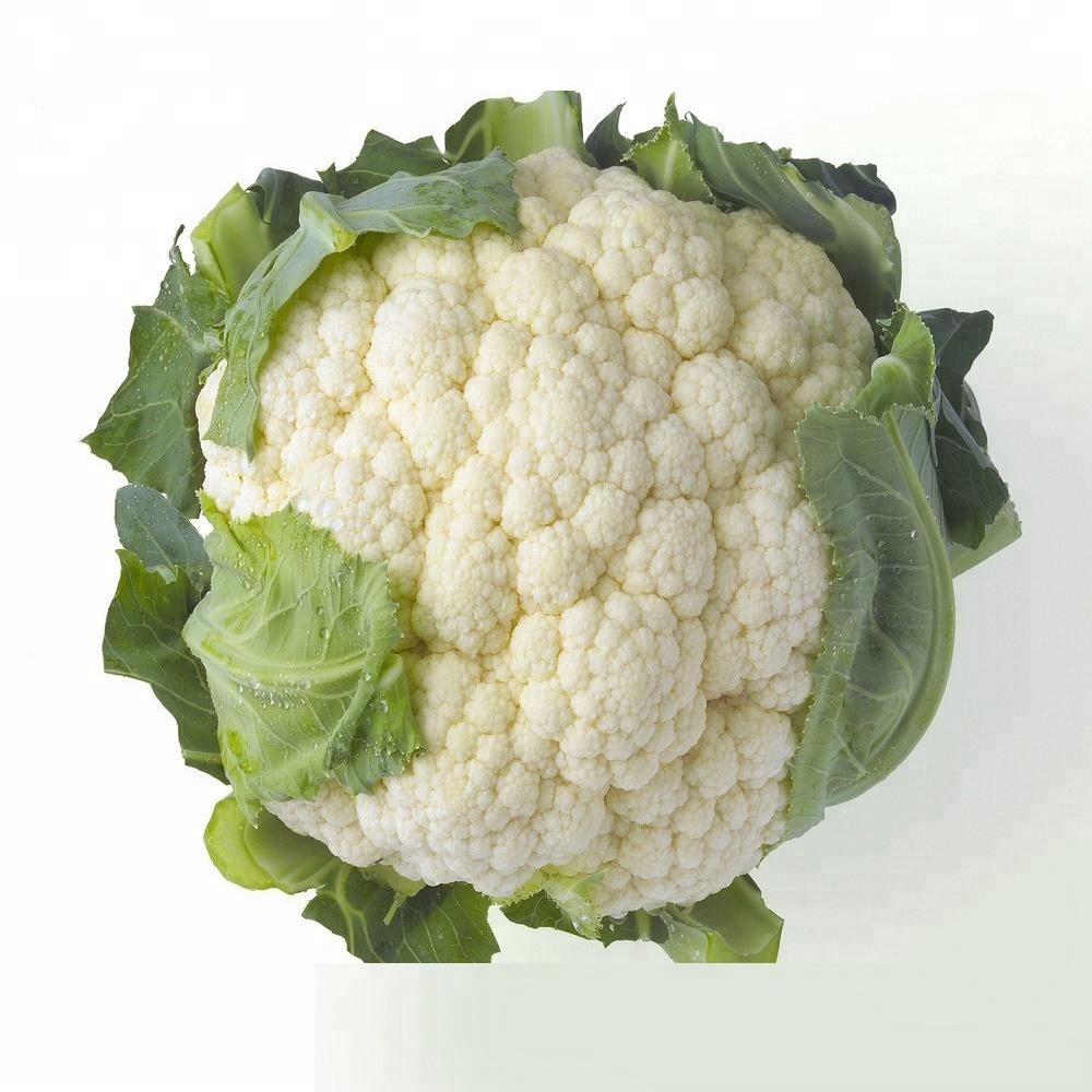 2018 crop bulk fresh organic cauliflower for sale