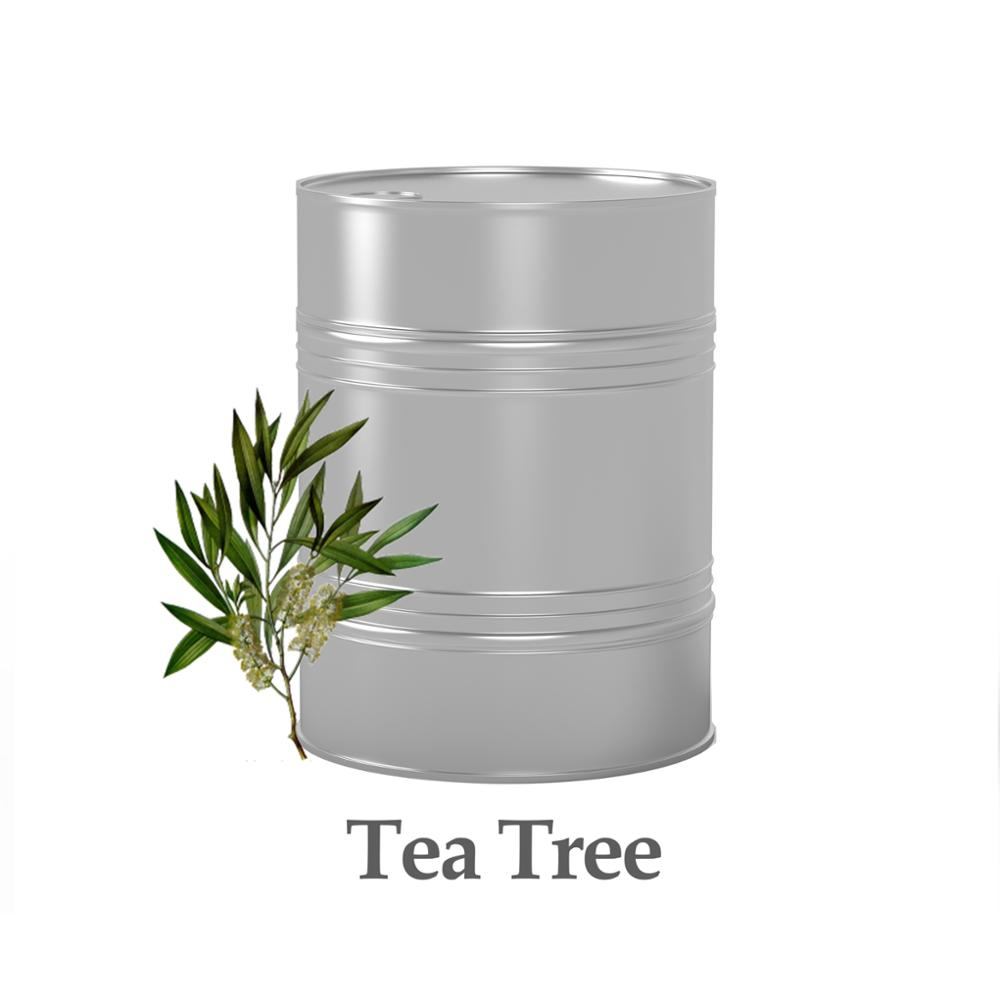 tea tree oil, 100% natural, bulk purchase or OEM sale