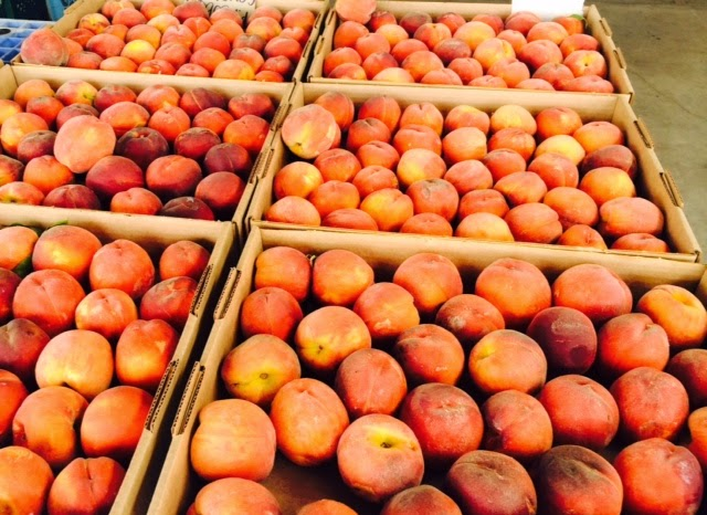 Fresh Peaches for sale