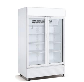 600L Commercial Upright Double Glass Door Drink Display Vertical Freezer