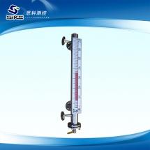 Magnetic level gauge