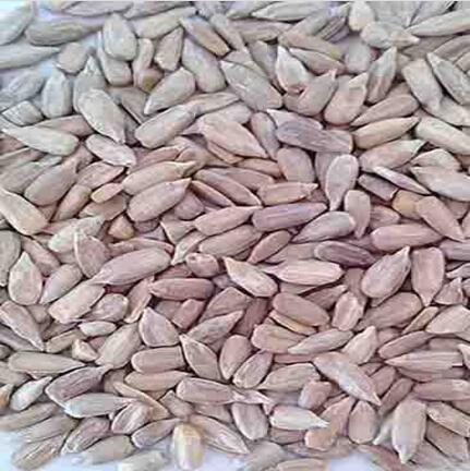 Chinese Sunflower Seeds for sale