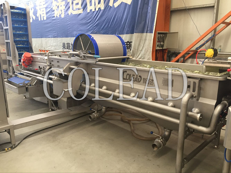 vegetable washing machine salad vegetable processing line for sale