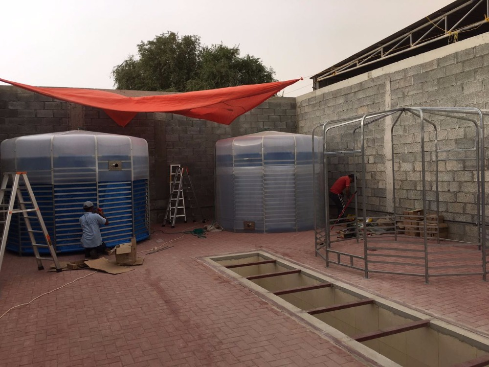 China biogas power plant digester for sale