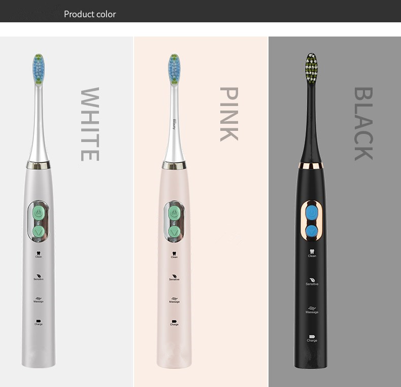 Electric Toothbrush Clean as Dentist Rechargeable Sonic Toothbrush with Smart Timer BD3101 for sale