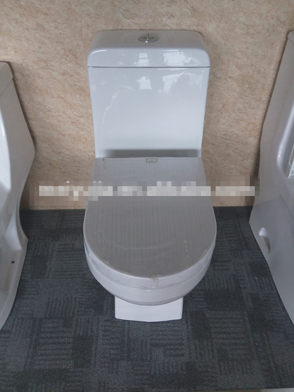 Meiyujia Floor Mounted Washdown One-piece toilet from Chaozhou 8239 Foe Sale