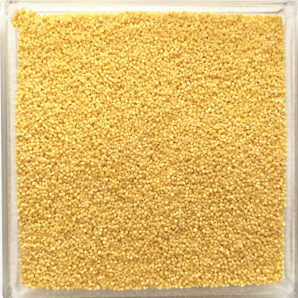yellow millet in husk for sale