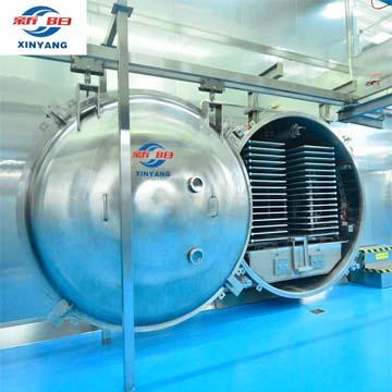 CE certificate fruit freeze dryer lyophilizer machine price