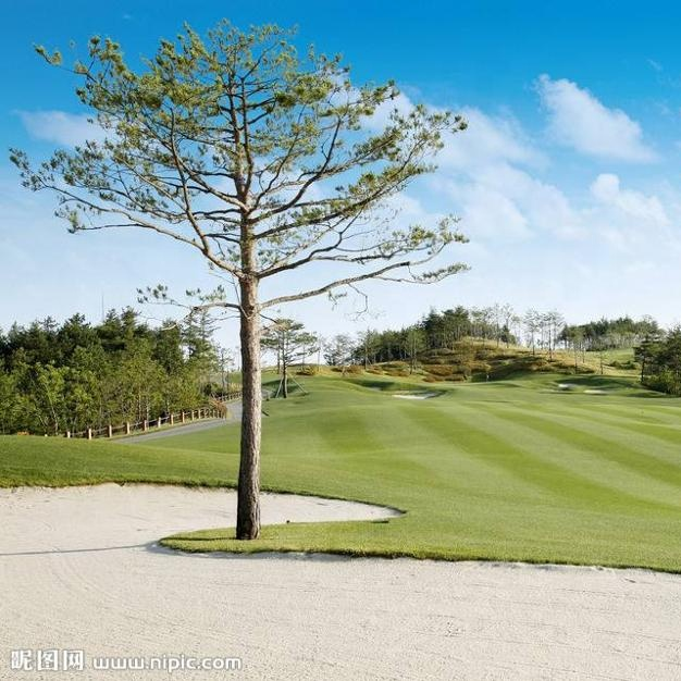 Golf Course Used Snow White Dolomite Sand